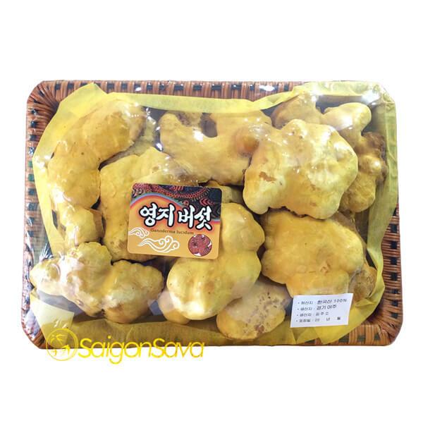 Nấm linh chi Thượng Hoàng Hàn Quốc 0.5kg