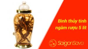 Bình thủy tinh ngâm rượu 5 lít – SaigonSava