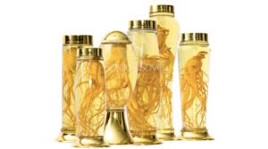 Kinh nghiệm chọn mua bình thủy tinh ngâm rượu cao cấp