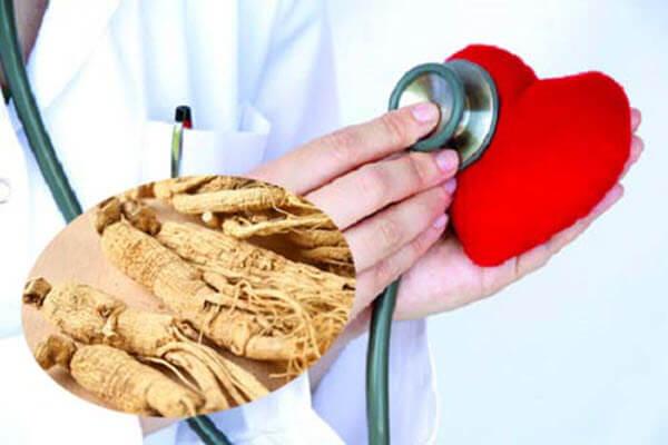 Hồng sâm Hàn Quốc tốt cho hệ tim mạch và ngăn ngừa nguy cơ xơ vữa động mạch