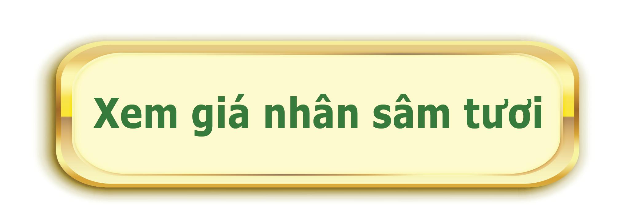 Bảng giá nhân sâm tươi hàn quốc tại saigonsava