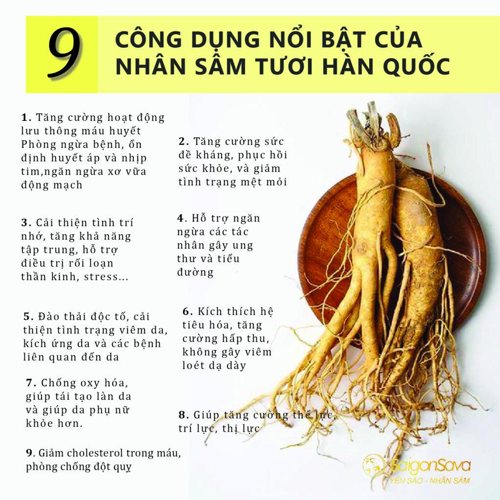 CÔNG DỤNG SÂM TƯƠI HÀN QUỐC