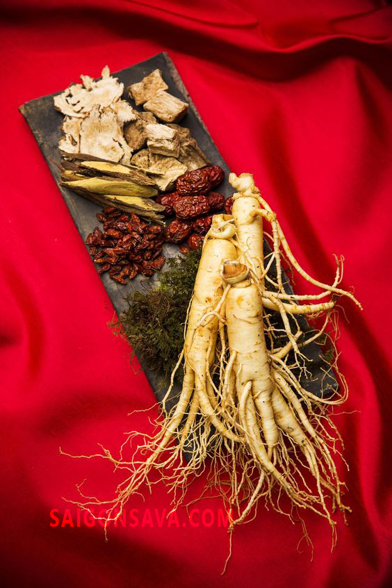 Sử dụng các sản phẩn của sâm giúp phòng ngừa bệnh tật