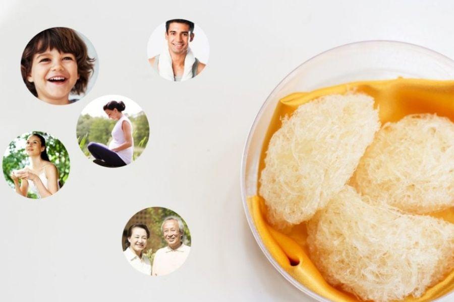 Tìm hiểu các tác dụng của yến sào đối với sức khỏe