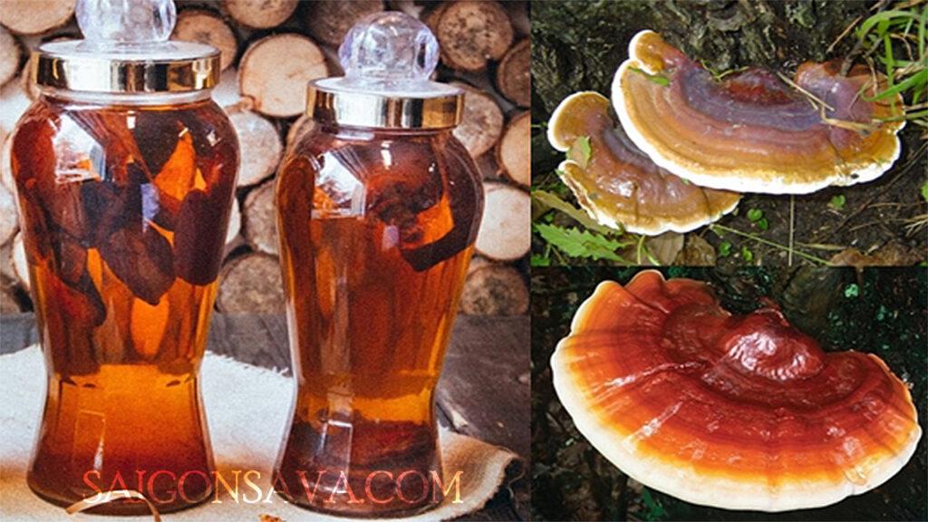 Ngâm rượu với nấm linh chi sẽ cho công dụng tuyệt vời cho sức khoẻ, nhất là phái mạnh
