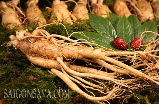 Nhân sâm, loại thảo dược quý hiếm tốt cho sức khỏe được tin dùng và ưa chuộng